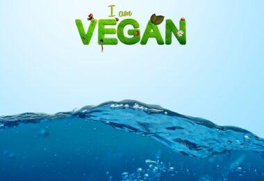 Pros y contras del veganismo