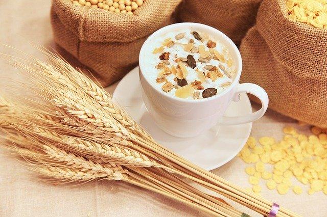 Fibra dietetica para alimentacion equilibrada